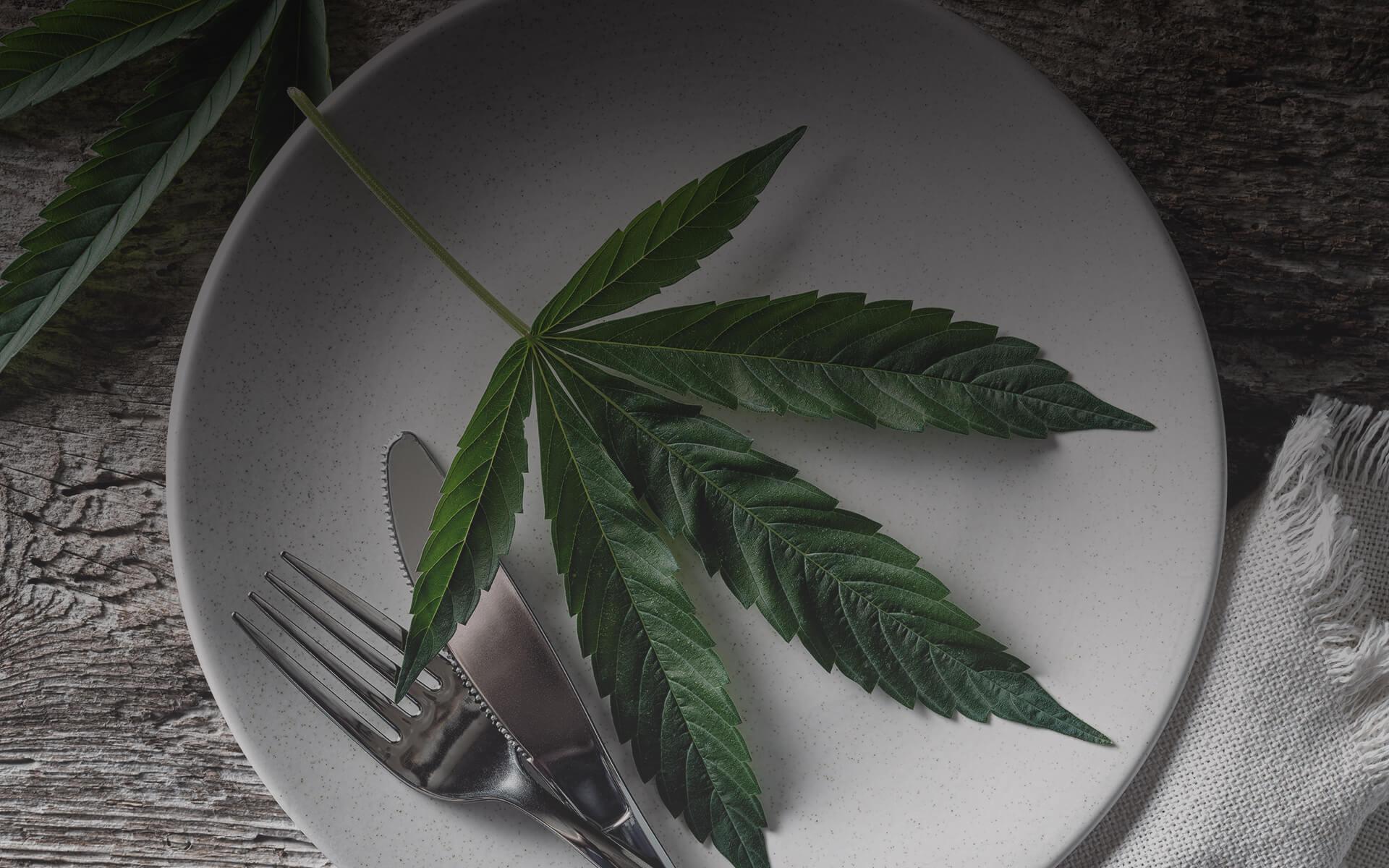 Canolio Gourmet